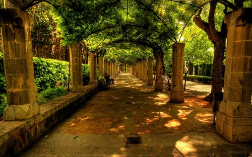 beautiful-alley-bench-nature-spain
