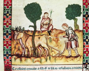 Medieval Manuscript Illumination of a Farmer Teaching His Son to Plow From Alphonse Le Sage's
